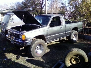 sportd50s 1987 Dodge D50 photo