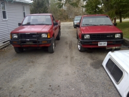 jtreadss 1988 Dodge D50 photo thumbnail