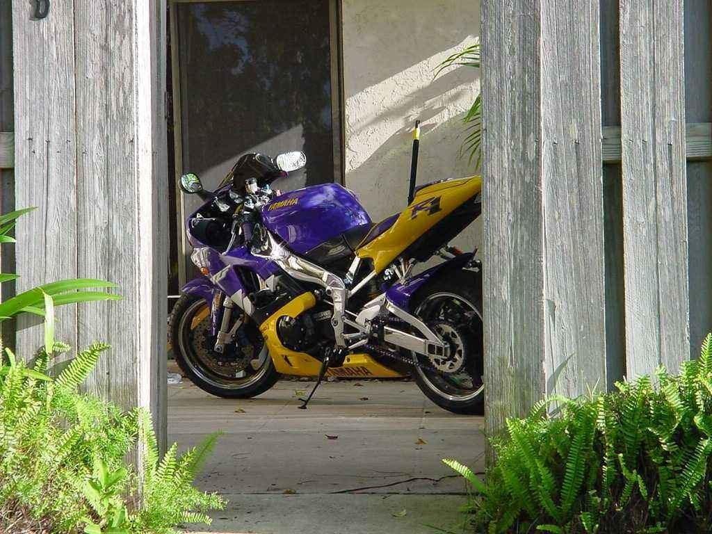 PBBODYDROPs 1999 Show Bikes other photo