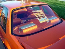 OneSICK89STANGs 1989 Ford Mustang photo thumbnail