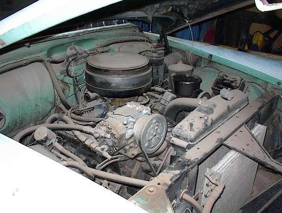 FKWfans 1955 Cadillac Coupe De Ville photo