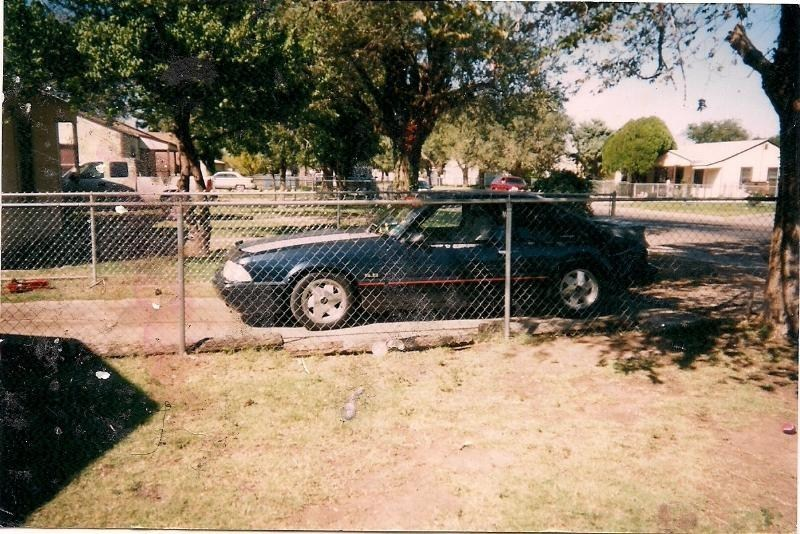 fivehos 1988 Ford Mustang photo