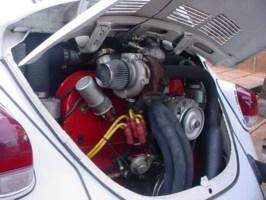matboys 1974 Volkswagen Bug photo thumbnail
