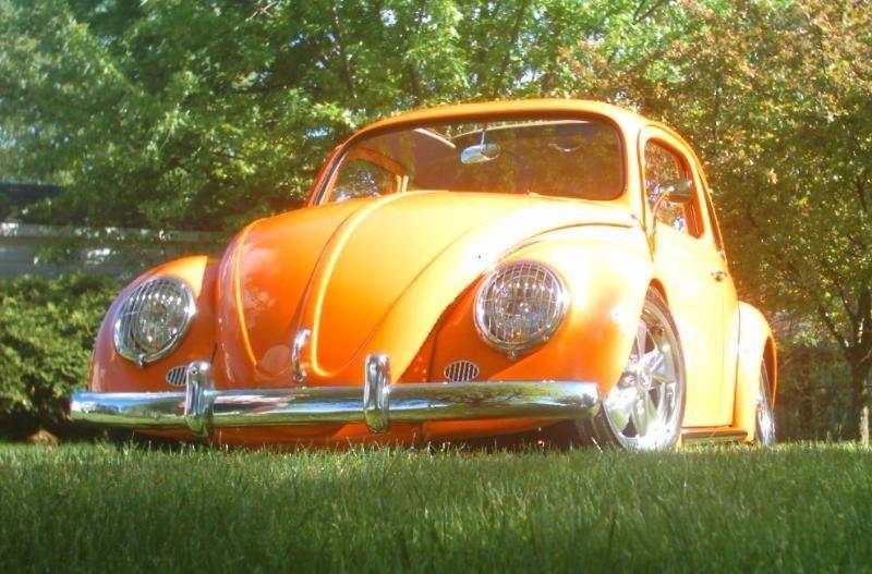 baggedbug1s 1963 Volkswagen Bug photo