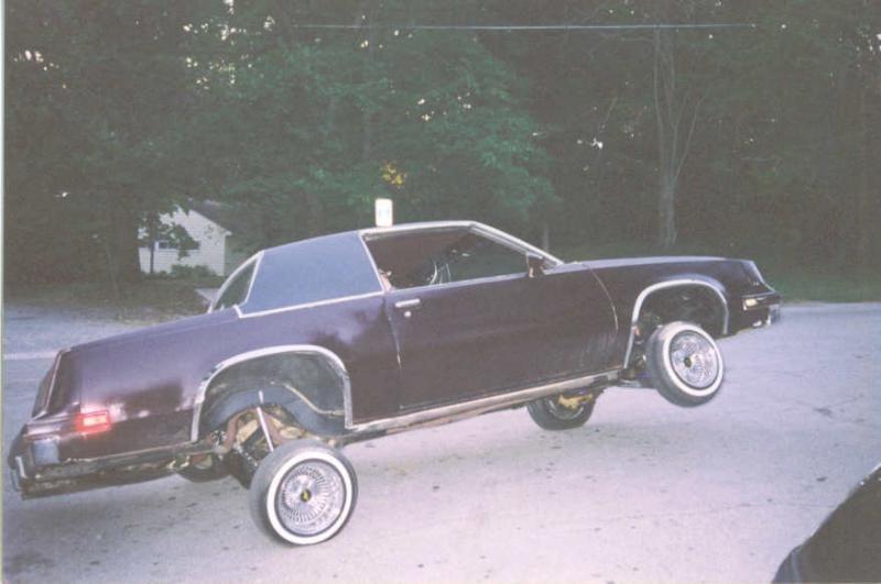 lisaogles 1984 Oldsmobile Ctlss Supreme photo
