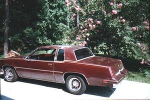 mthomas002s 1982 Oldsmobile Ctlss Supreme photo thumbnail