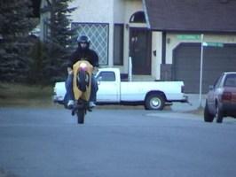 JCMONEYs 1991 Show Bikes other photo thumbnail