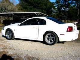 281GTs 2000 Ford Mustang photo thumbnail