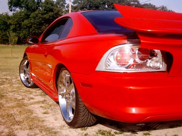 timwdvs 1998 Ford Mustang photo
