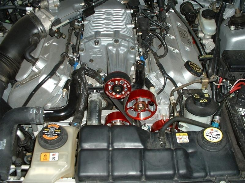 slammed_s-10s 2003 Ford Mustang photo