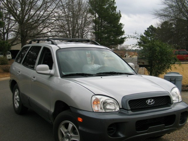tatersgurls 2003 Hyundai Santa Fe photo