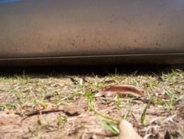 wiks 1992 GMC 1500 Pickup photo thumbnail
