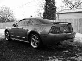 ddanis60s 2002 Ford Mustang photo thumbnail