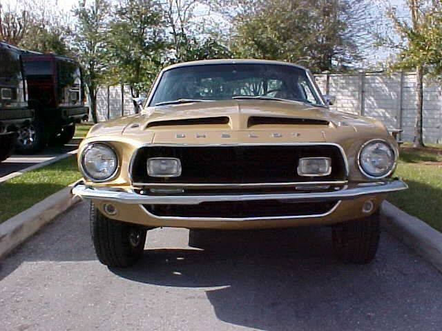 bulldogvid01s 1968 Ford Mustang photo