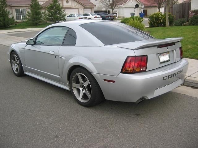 silversally000s 2000 Ford Mustang photo