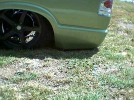 baggedshadows 1995 Chevy S-10 photo thumbnail