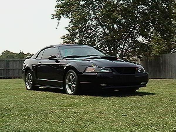 justinoftortions 2004 Ford Mustang photo