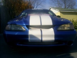 TvMtrsprtss 1995 Ford Mustang photo thumbnail