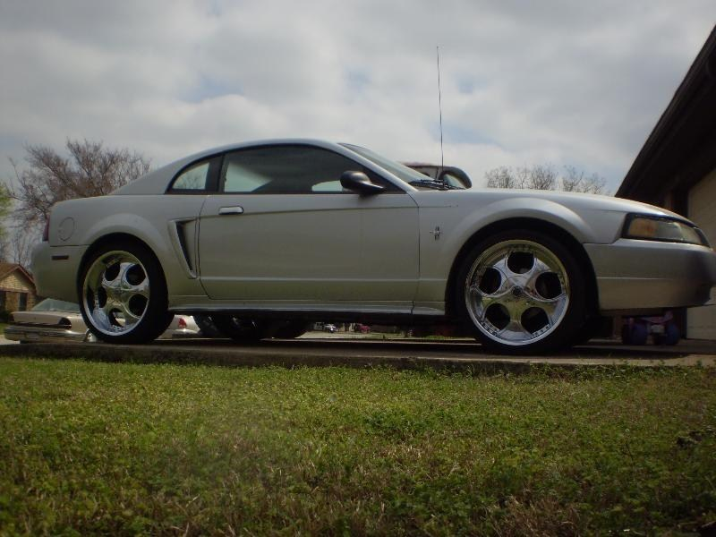 TIMS10PROGs 2002 Ford Mustang photo